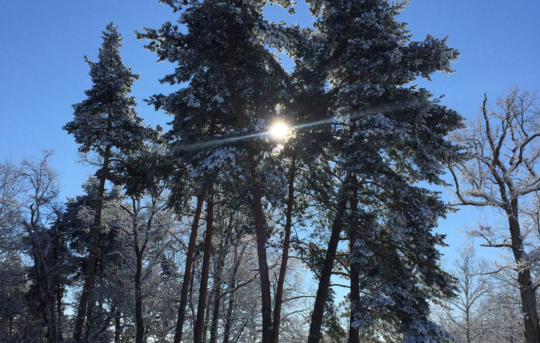 couv-hiver1